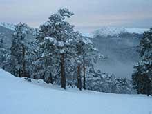 Fotografía de nevasport.com