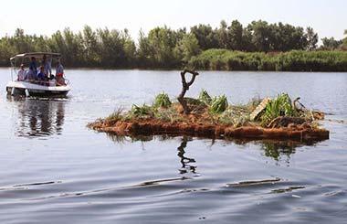La laguna del Soto cuenta con una isla artificial para la reproducción de aves
