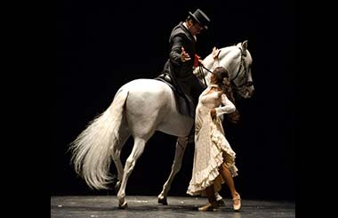 Flamenco para Traviata