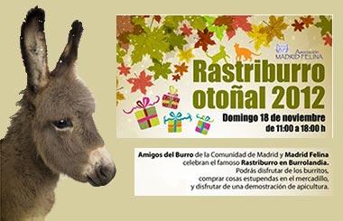 Rastriburro en Madrid el domingo 18 de noviembre