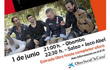 """Conciertos """"Diversons, música para la integración"""" 2013, de la Obra Social """"La Caixa"""""""