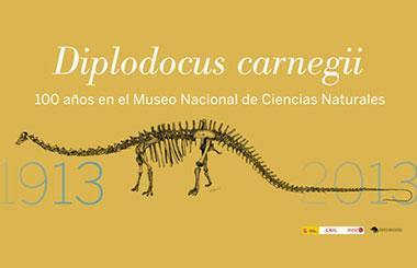 Centenario del Diplodocus carnegii en el Museo Nacional de Ciencias Naturales