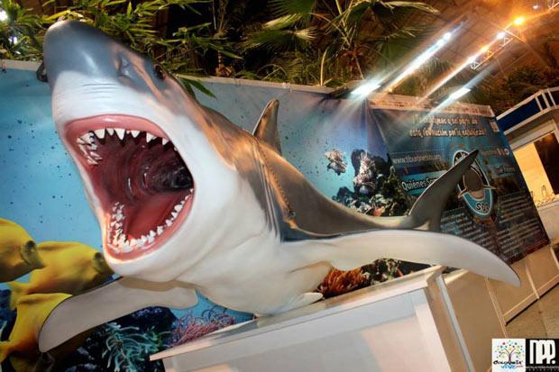 exposicion tiburones