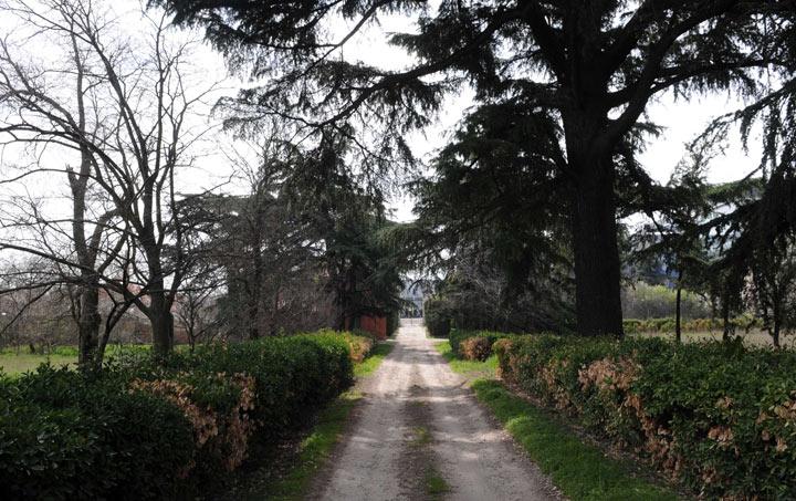 Visitas Guiadas Gratuitas a los Jardines de Torre Arias a partir de octubre