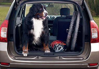 La vuelta a la rutina es más fácil con Dacia Logan MCV