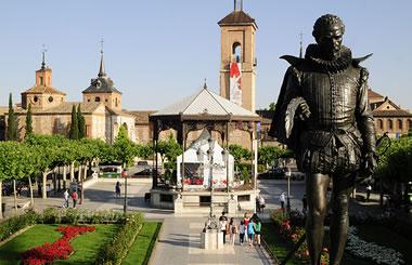 «Invierno en Ruta», rutas guiadas gratuitas para conocer Alcalá de Henares y sus Cigüeñas