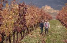 Vivanco, mucho más que una bodega en La Rioja