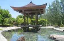 Visita guiada al idílico jardín de la Vega y al Museo del Bonsái de Alcobendas