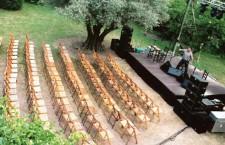 Fotografia de Angeles Filgueira – Fundacion Olivar de Castillejo