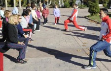 Programa enforma de la Comunidad de Madrid 2015-2016