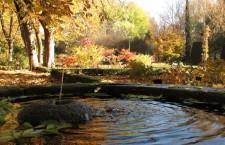 Fotografía del Real Jardín Botánico de Madrid