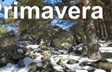Rutas gratuitas a parques y sendas de Madrid con Natursierra
