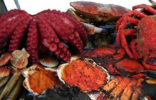 El mejor marisco gallego en Alcobendas
