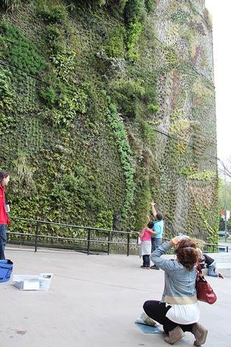 Visita guiada al jard n vertical de caixaforum madrid for Jardin vertical caixaforum madrid
