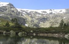 Tren de la Naturaleza en Madrid. Verano 2016