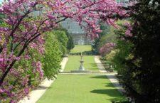 Ruta Guiada Gratuita «Jardines del Campo del Moro y sus alrededores»