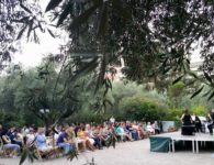 NOCHES DEL OLIVAR, conciertos musicales en un jardín de olivos centenarios