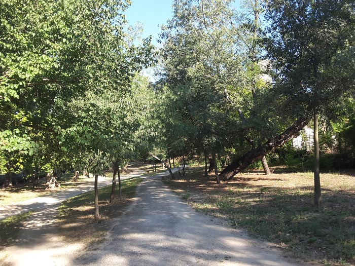 Paseo junto a la Avenida de Portugal