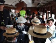 Tren de la Fresa 2018. Tren con encanto de Madrid a Aranjuez