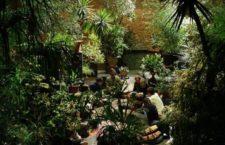 Garden State: Conde Duque se convierte en un jardín colectivo del 12 al 16 de septiembre 2018