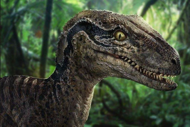Caminando entre Dinosaurios y Dinopétrea, dos interesantes eventos para amantes de los dinosaurios