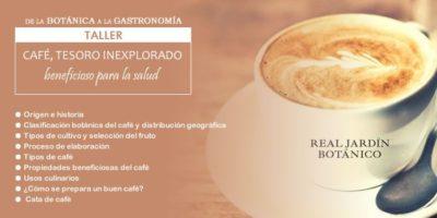 Visita guiada al Real Jardín Botánico para conocer los secretos y curiosidades del Café