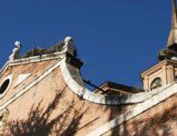 Ruta de las cigüeñas de Alcalá de Henares Febrero-Marzo 2019