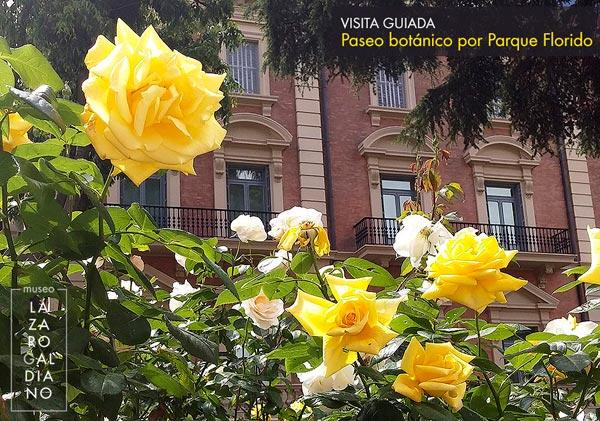 parque_florido
