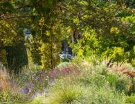 Fotografía del Real Jardín Botánico