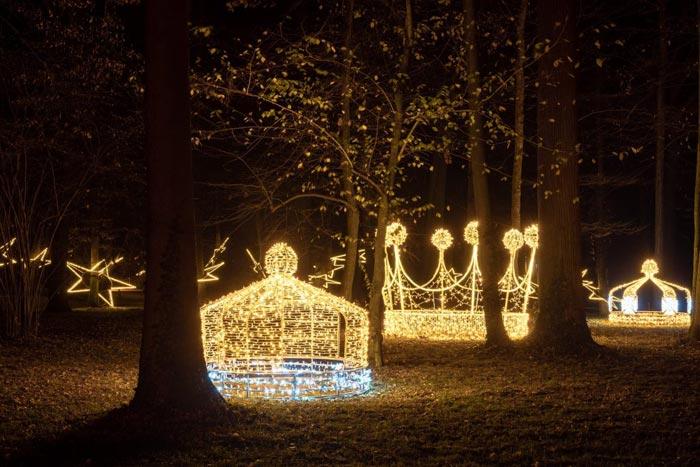 Luces De Navidad En El Jardín Botánico De Madrid Y Un Mágico Paseo Nocturno Espacio Madrid