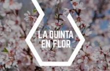 Danza, música y poesía para disfrutar de los almendros en flor en Parque Quinta de Los Molinos