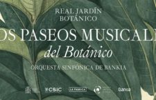 Disfruta de paseos musicales nocturnos en el Real Jardín Botánico